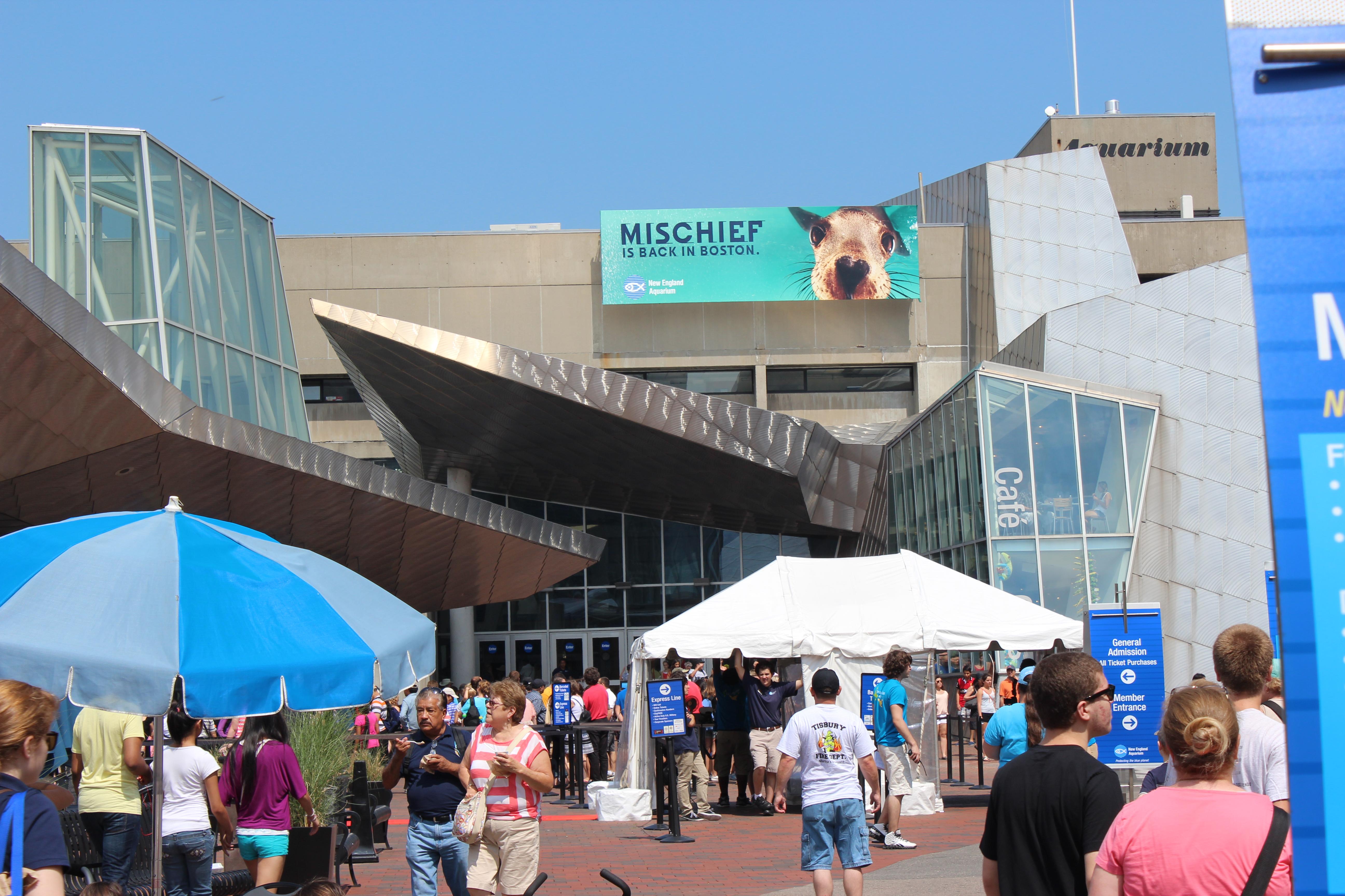 Image Result For Aquarium Boston