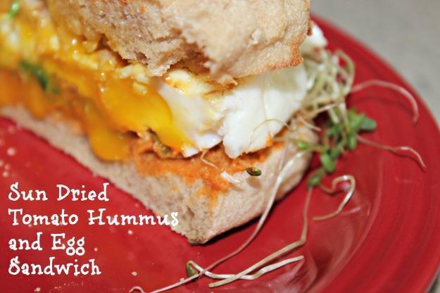 Peach Mango Smoothie and Sun Dried Tomato Egg Sandwich
