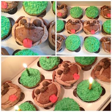 Pug Cupcake Collage